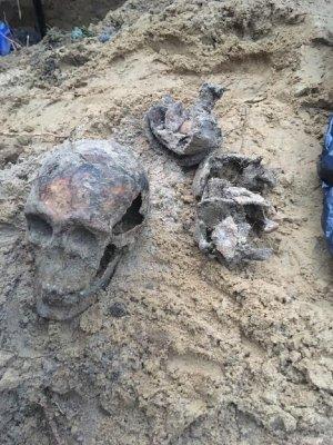 Znaleziona czaszka i fragmenty czaszek